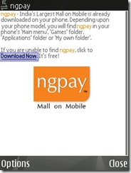 Open ngpay.com on mobile